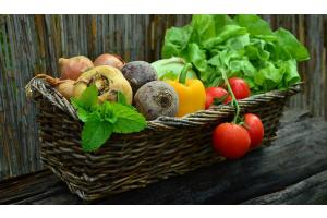 World Food Day: qualità e sostenibilità